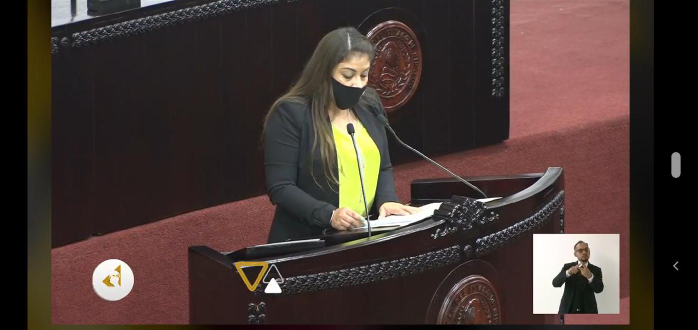 Diputada Jajaira en el pleno